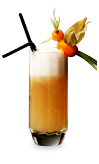 Perfect Citrus Fizz